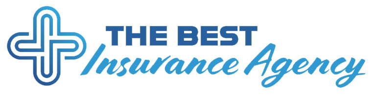 Light blue text on a white background that says 'The Best Insurance Agency' and has a logo of a plus sign to the left of the text.